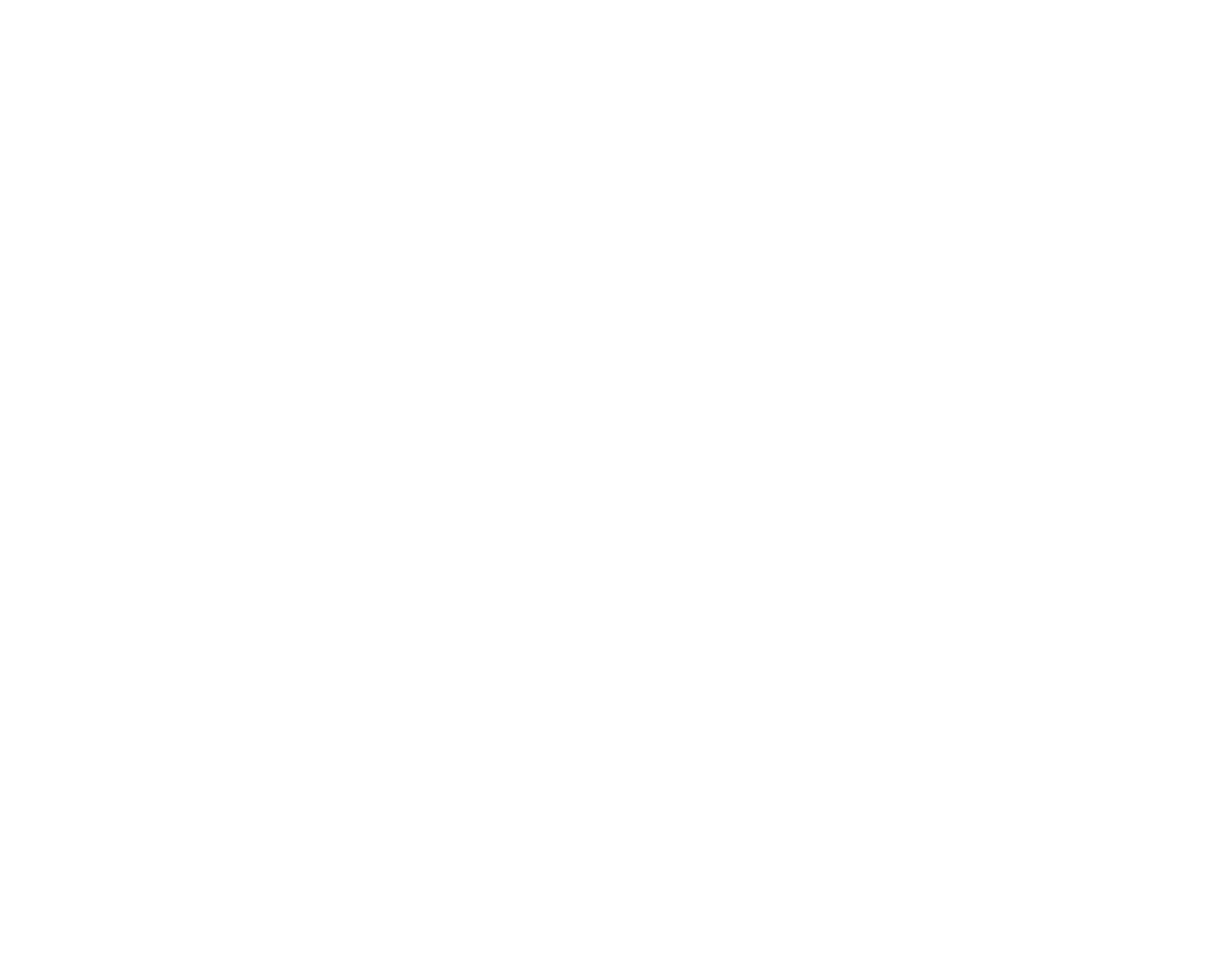 Hide Detailing